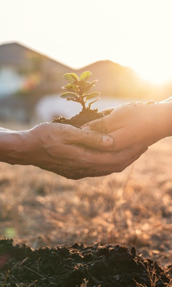 Sostenibilidad Ecoembes